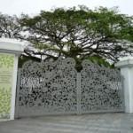 botanicheskij-sad-v-singapure