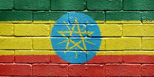 Flag of Ethiopia on brick wall