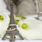 Just married in Paris. Two wedding rings on the miniature Eiffel Tower