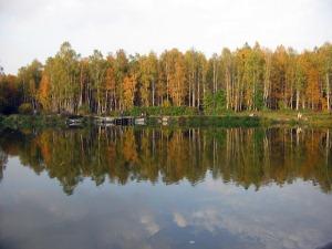 losinij-ostrov-v-moskve