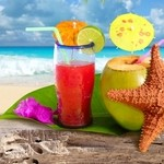 Coconut cocktail starfish tropical beach