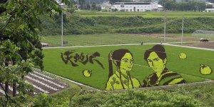 Японская живопись на рисовых полях