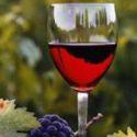 Маршрутами бургундского вина