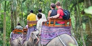 Путешествие по Восточной Африке
