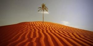 Десять самых горячих мест на планете