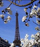 Франция весной - волшебное путешествие!