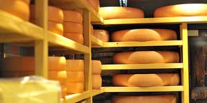 Швейцарский сыр: надежность прежде всего