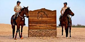 В Эмиратах набирает популярность конный туризм