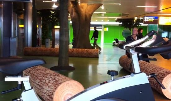 Зеленая зона аэропорта Схипхол в Амстердаме
