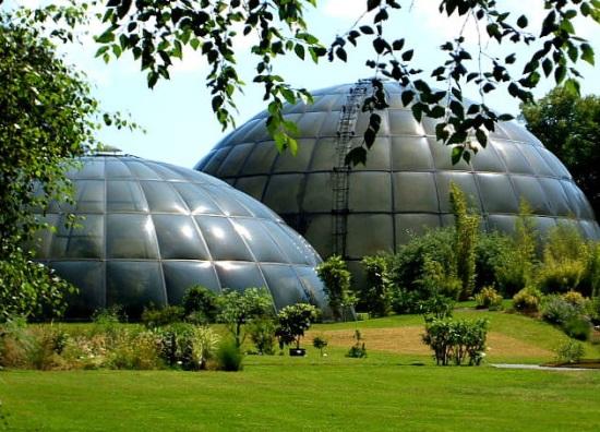 Ботанический сад в Цюрихе