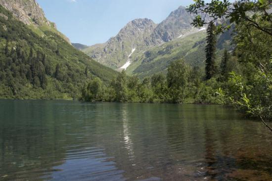 Природа озера Кардывач