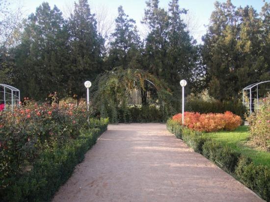 Симферополь - Ботанический сад