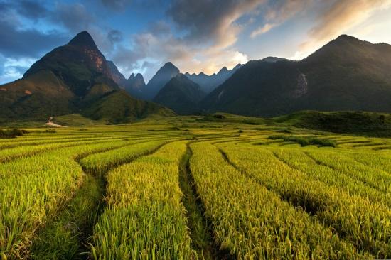 Долина горы Фансипан во Вьетнаме