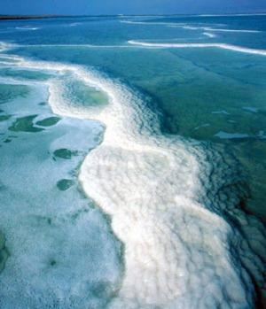 Мёртвое море очень соленое