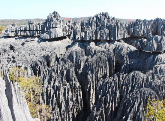 Цинги, каменный лес в Мадагаскаре