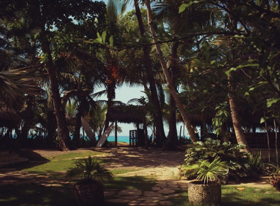 Климат на Доминике тропический